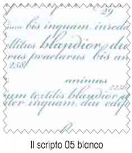 Scripto 05 Blanco