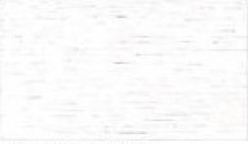 Blanco poro abierto Nº37
